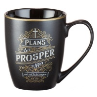 Plans to prosper you - Jer 29:11