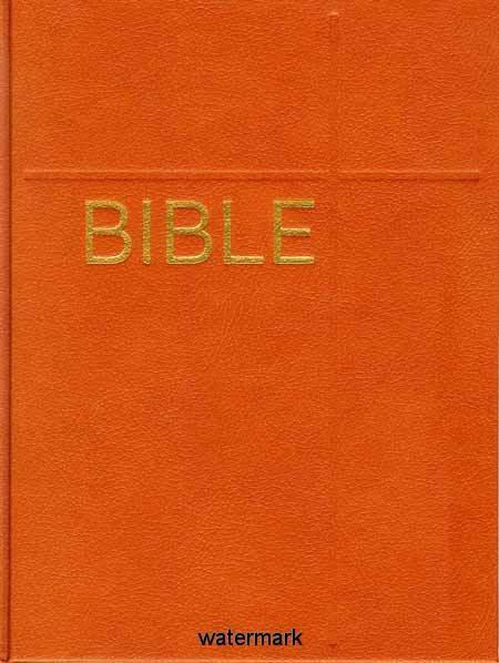 Bible: Český ekumenický překlad, včetně DTK: hnědá (dvousloupcová)