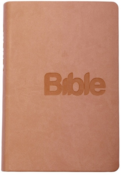 Bible 21 - umělá kůže pudrová (2018)