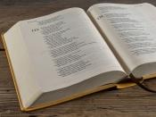 Bible 21 - umělá kůže hořčicová (2018)