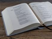 Bible 21 - umělá kůže šedomodrá (2018)