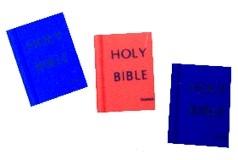 Bible Eraser