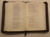 obal na Bibli B21, 188x127x32 mm, hnědý, imitace kůže, vyražená rybka