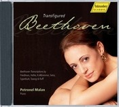 Transfigured Beethoven (P. Malan)